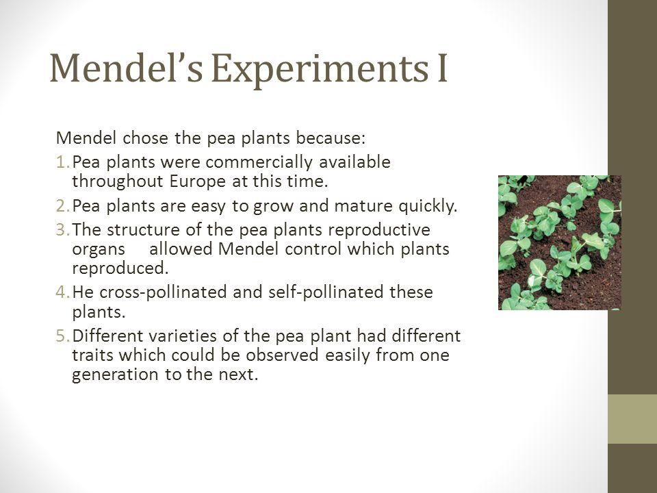 Mendel's Experiments I