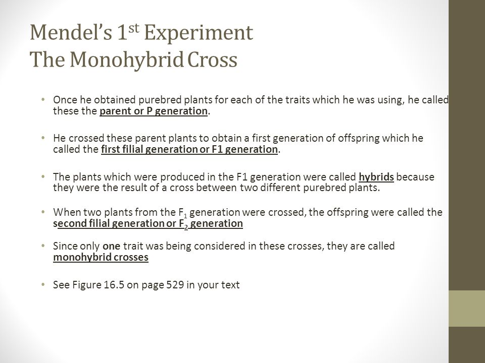 Mendel's 1st Experiment The Monohybrid Cross