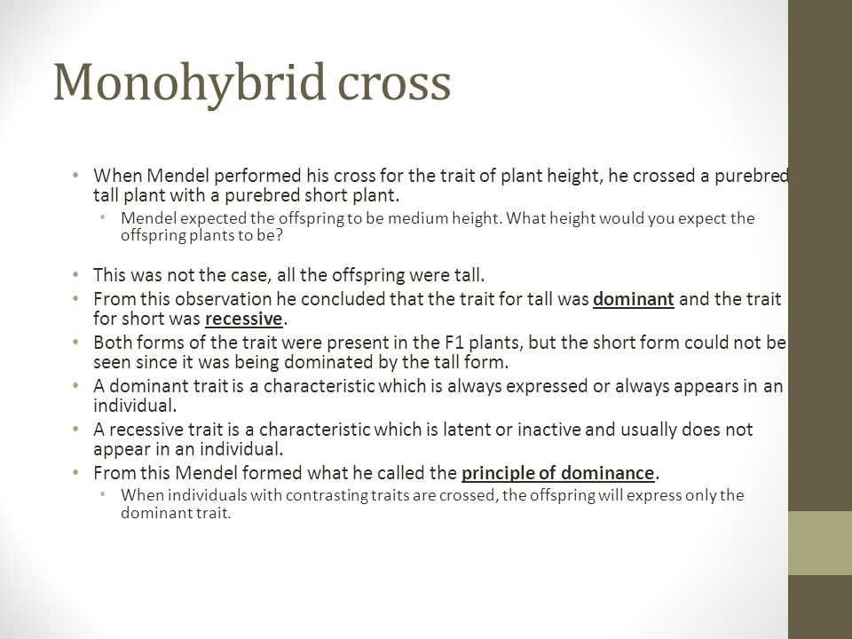 Monohybrid cross When Mendel performed his cross for the trait of plant height, he crossed a purebred tall plant with a purebred short plant.