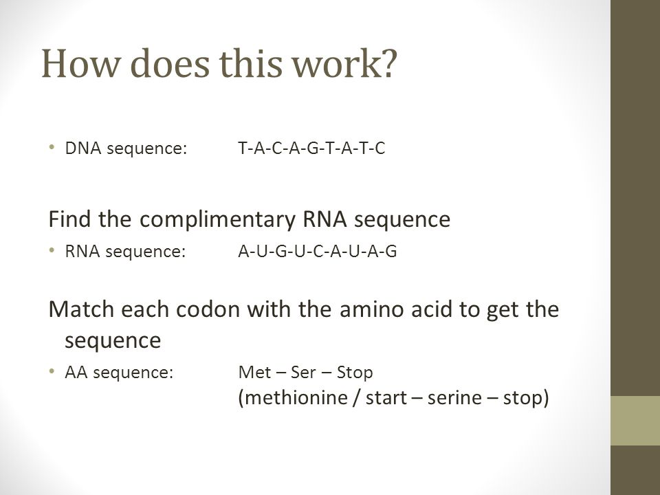 How does this work Find the complimentary RNA sequence