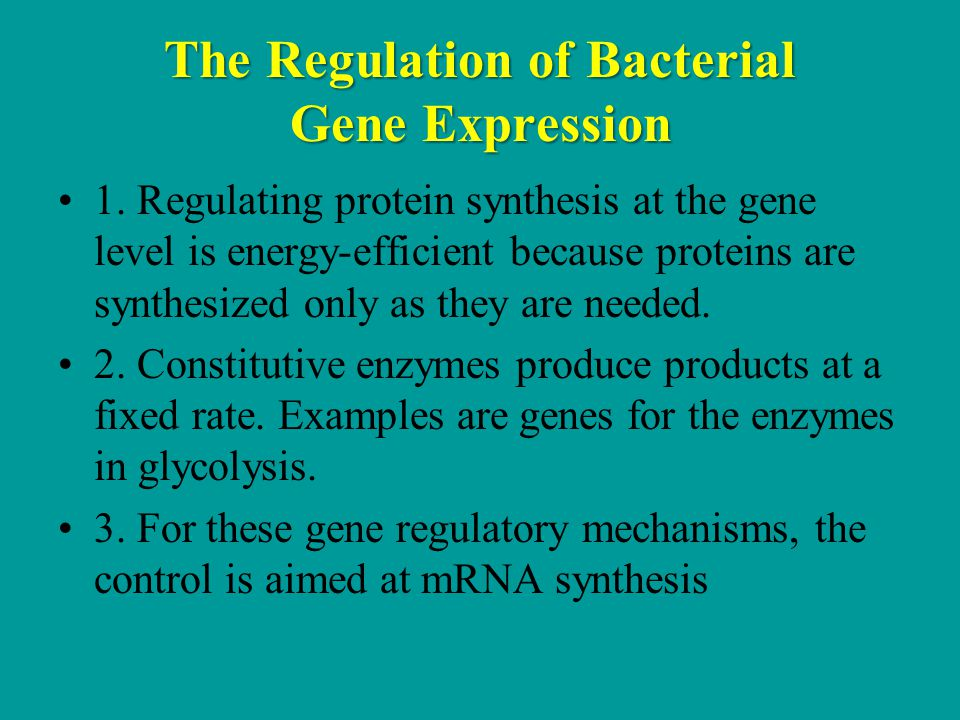 The Regulation of Bacterial Gene Expression