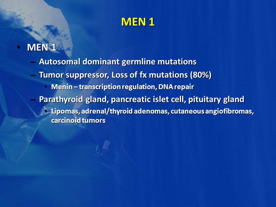 MEN 1 MEN 1 Autosomal dominant germline mutations