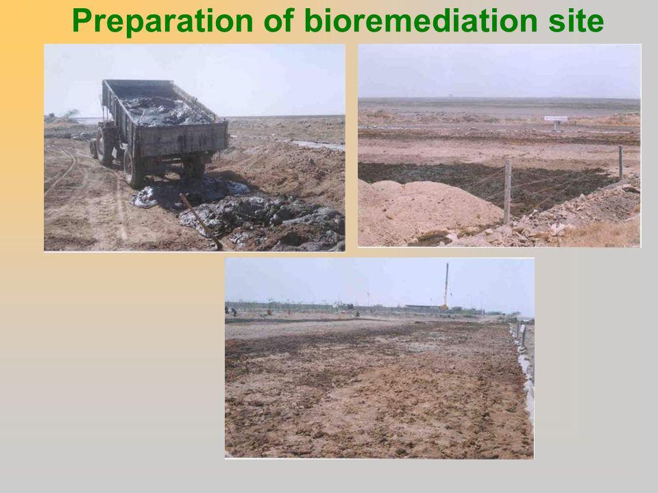Preparation of bioremediation site