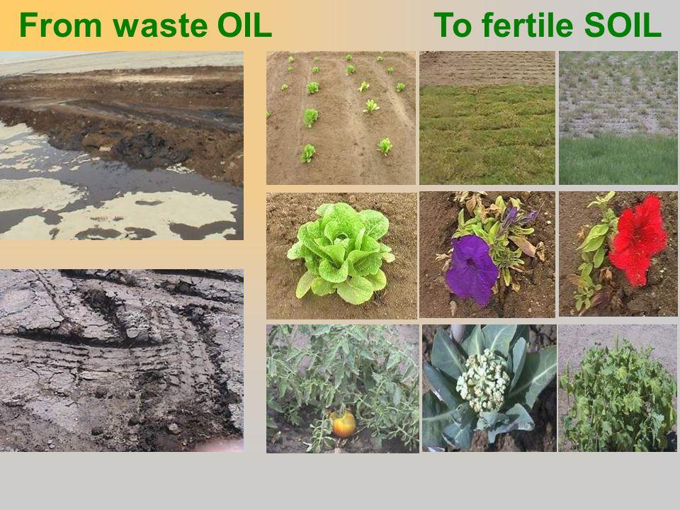 From waste OIL To fertile SOIL