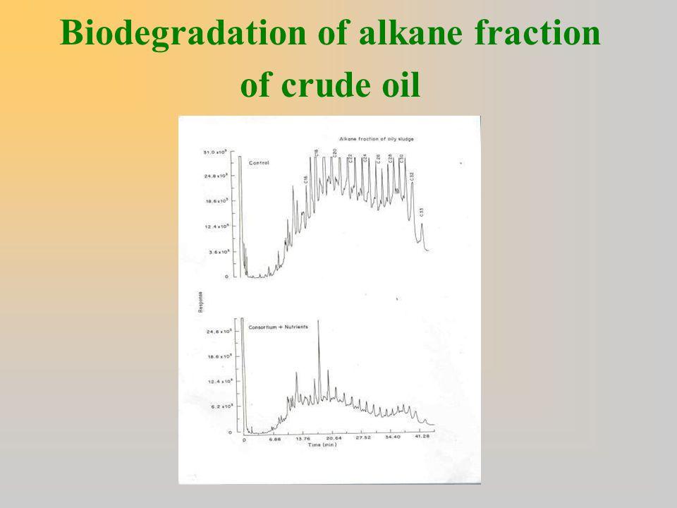 Biodegradation of alkane fraction