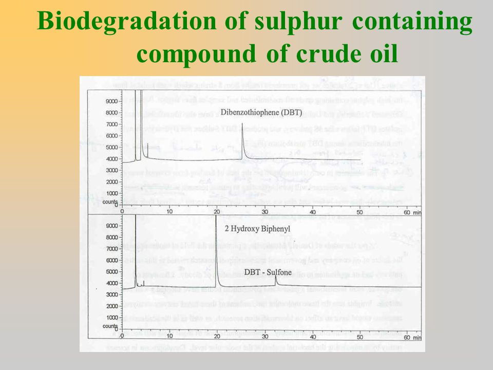 Biodegradation of sulphur containing compound of crude oil