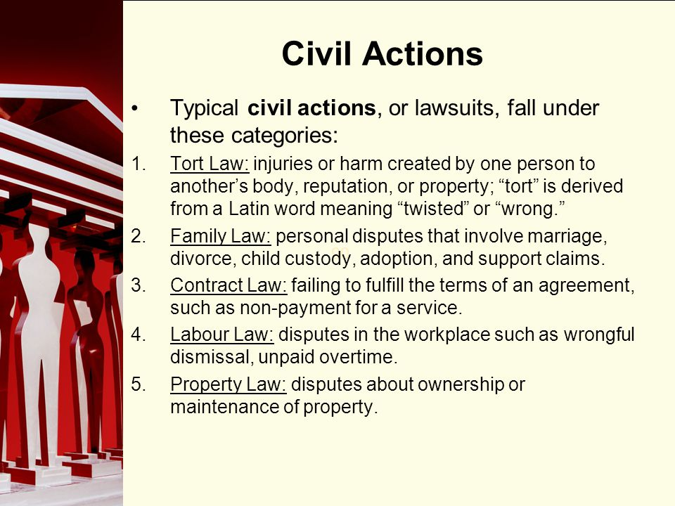 Civil Actions Typical civil actions, or lawsuits, fall under these categories: