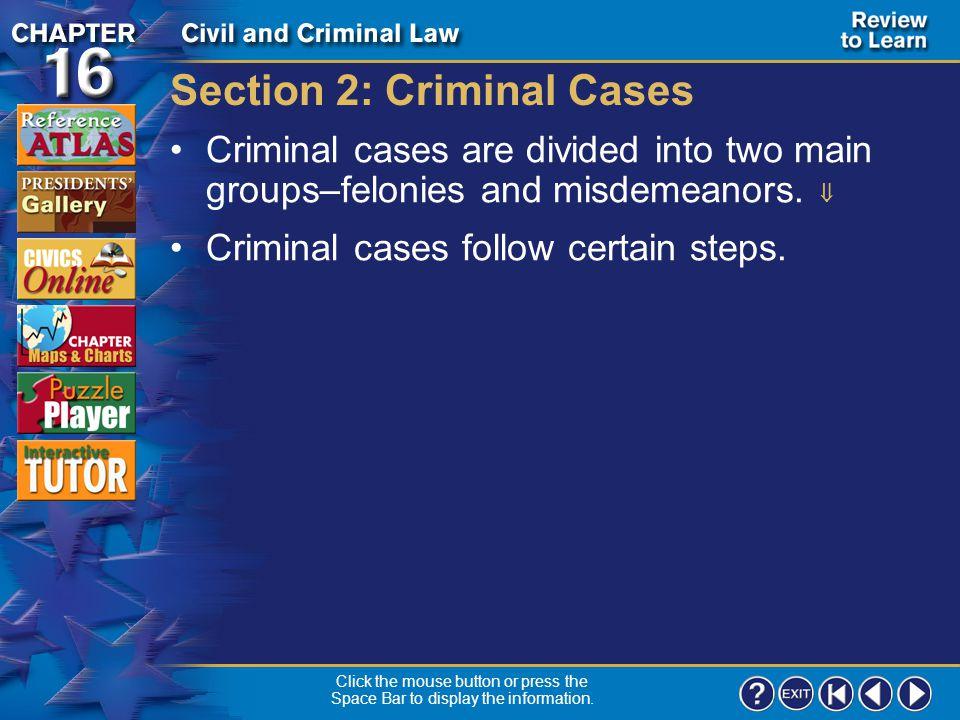Section 2: Criminal Cases