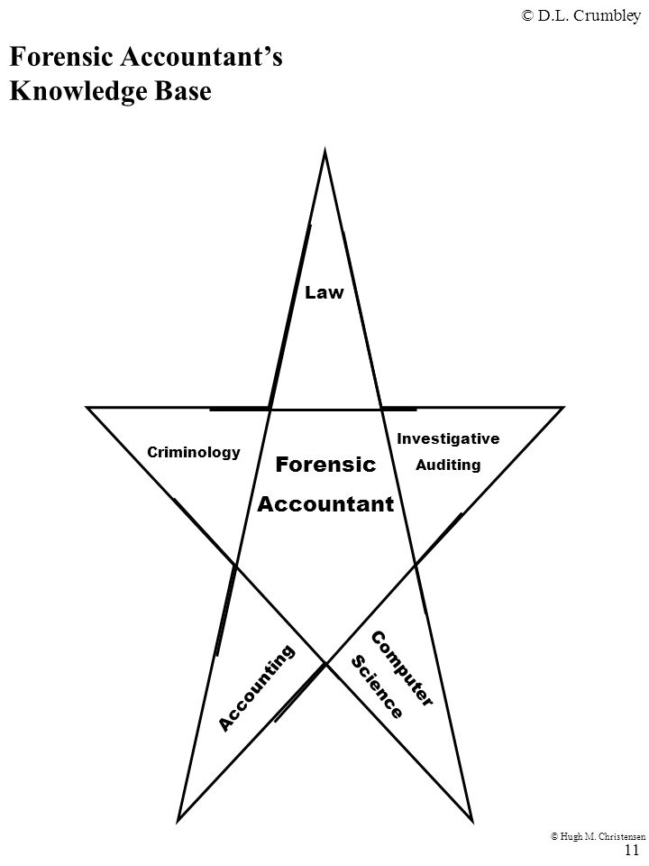 Forensic Accountant's Knowledge Base