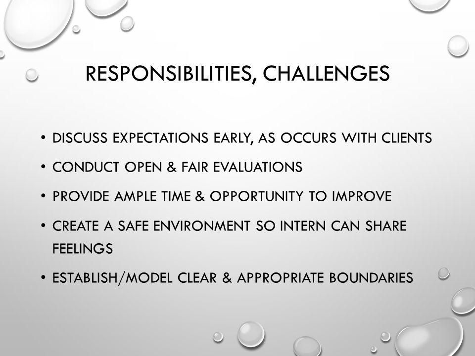 Responsibilities, Challenges