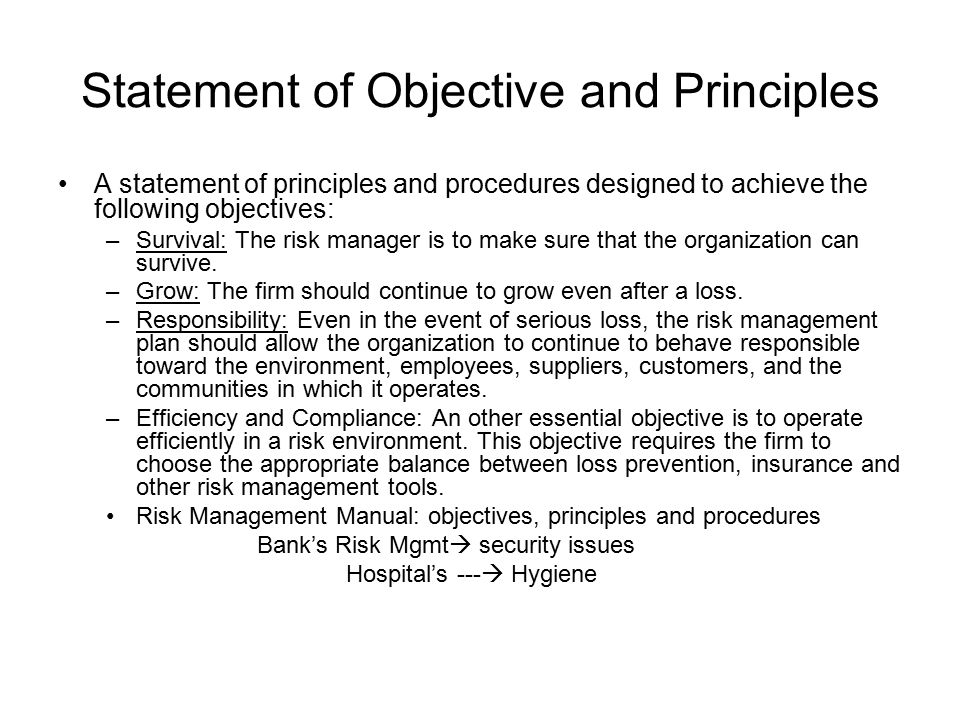 Statement of Objective and Principles