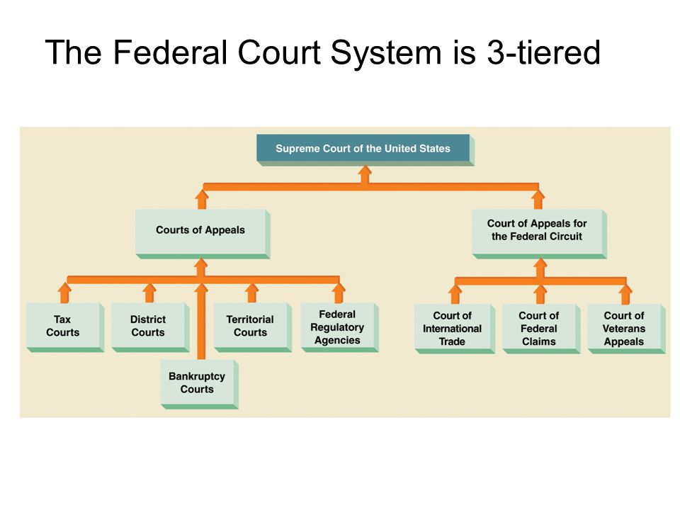 an analysis of court system today Ideas and analysis first judicial district, court of common pleas, philadelphia system is entirely consistent with a commitment to.