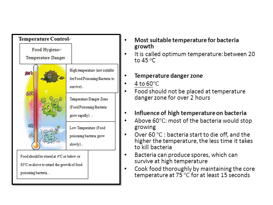 Most suitable temperature for bacteria growth