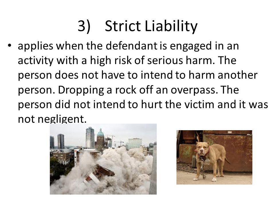 3) Strict Liability