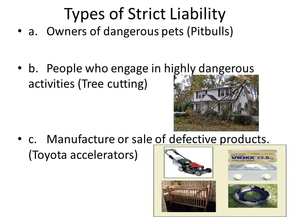 Types of Strict Liability