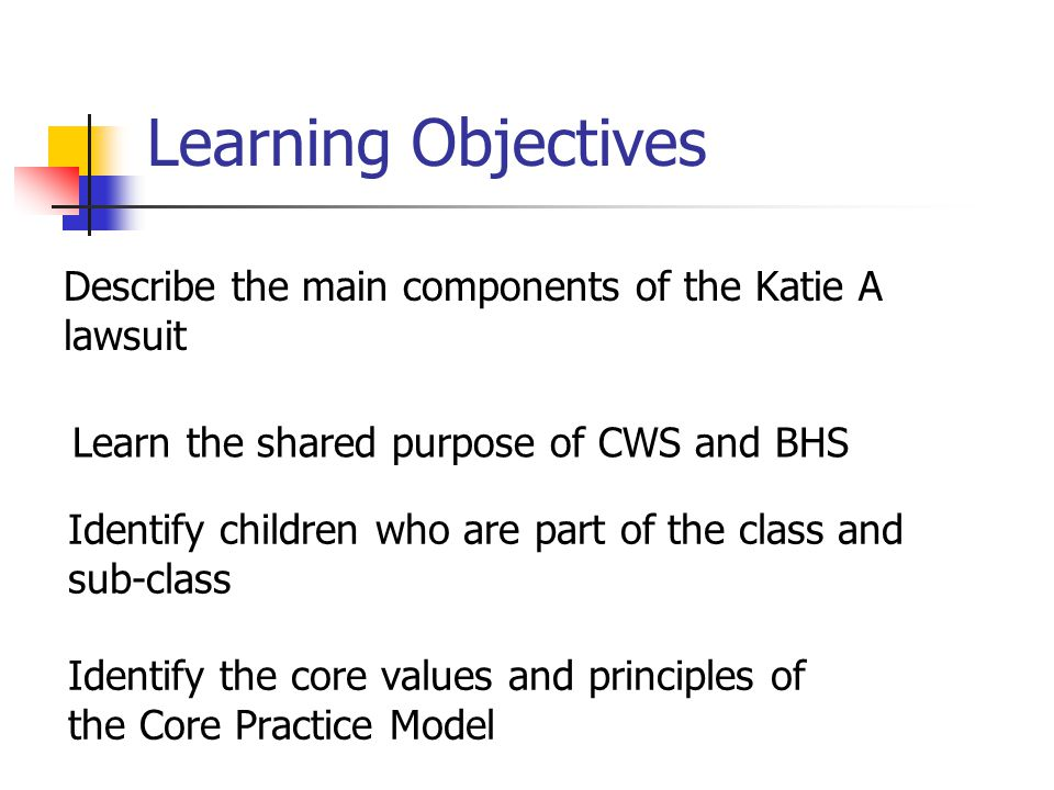 Learning Objectives Describe the main components of the Katie A lawsuit. Learn the shared purpose of CWS and BHS.