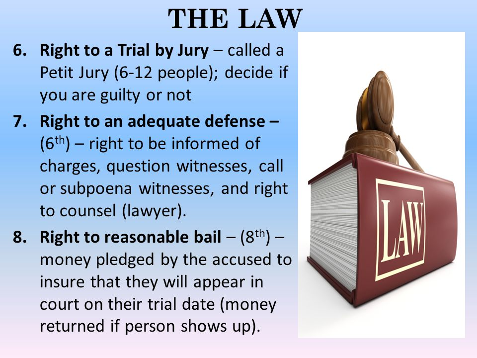 THE LAW Right to a Trial by Jury – called a Petit Jury (6-12 people); decide if you are guilty or not.