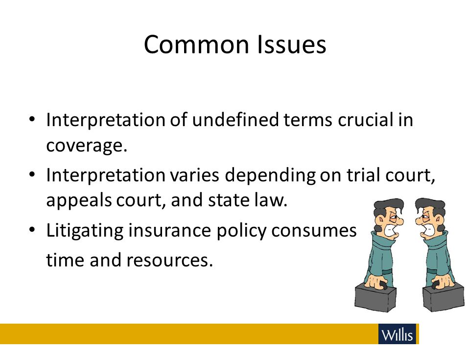 Common Issues Interpretation of undefined terms crucial in coverage.