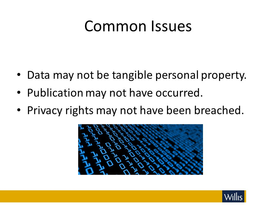 Common Issues Data may not be tangible personal property.