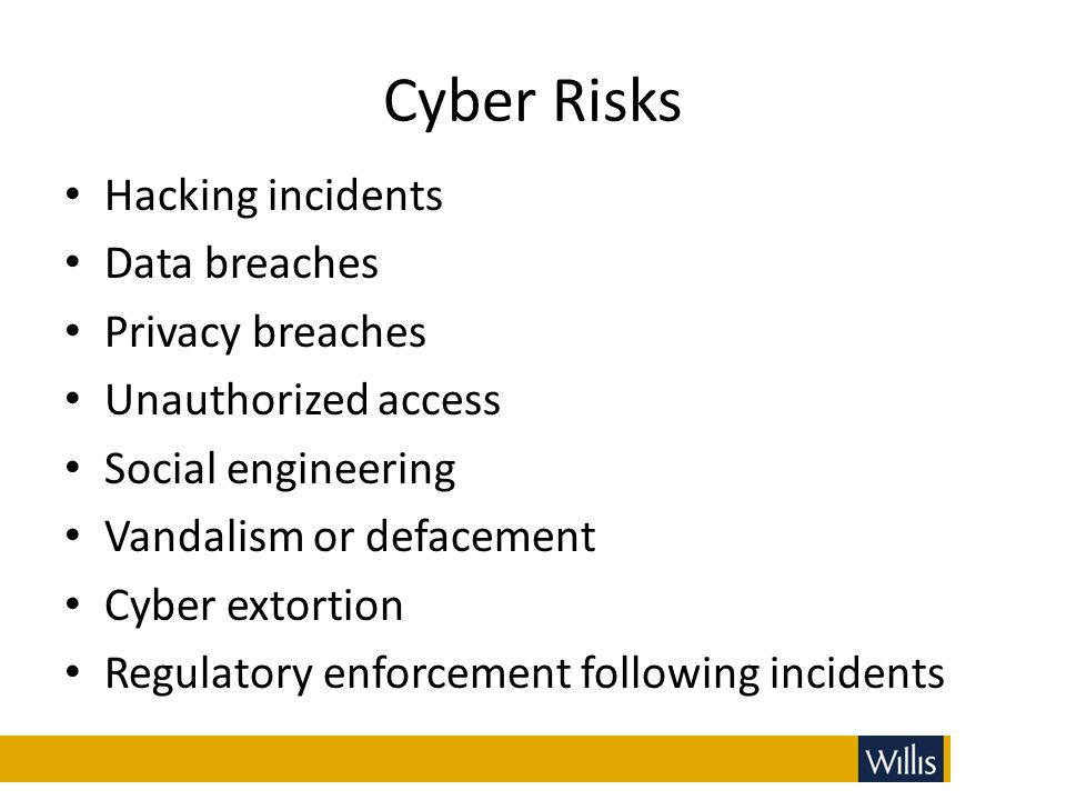 Cyber Risks Hacking incidents Data breaches Privacy breaches