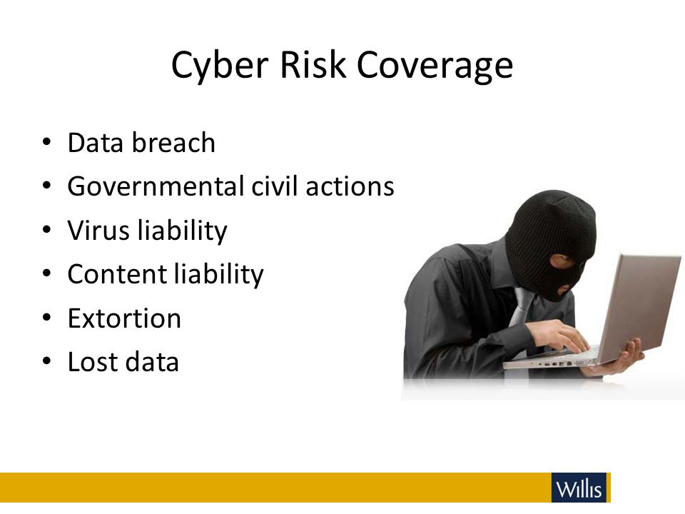 Cyber Risk Coverage Data breach Governmental civil actions