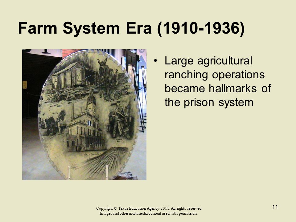 Farm System Era (1910-1936) Large agricultural ranching operations became hallmarks of the prison system.