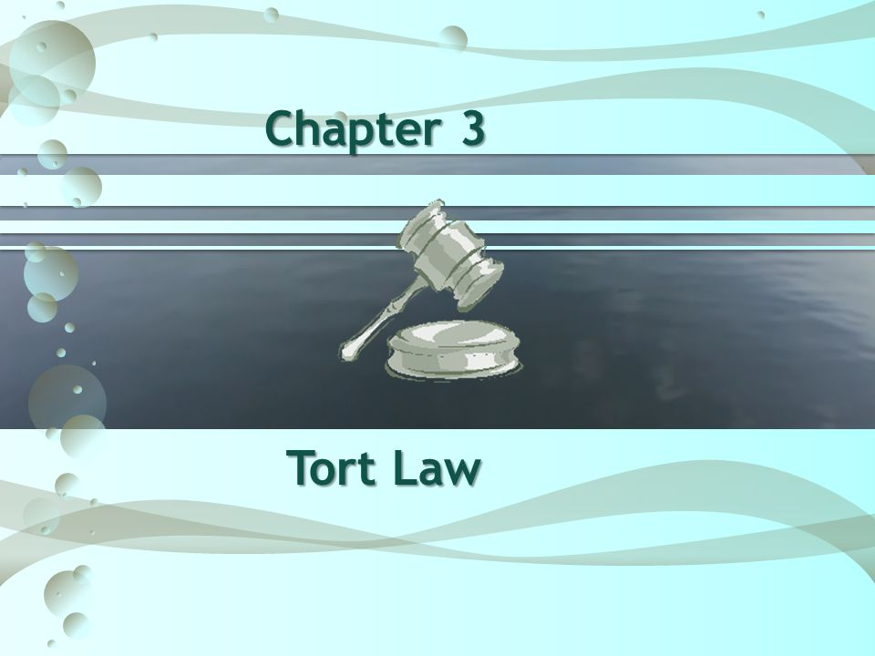 Chapter 3 Tort Law