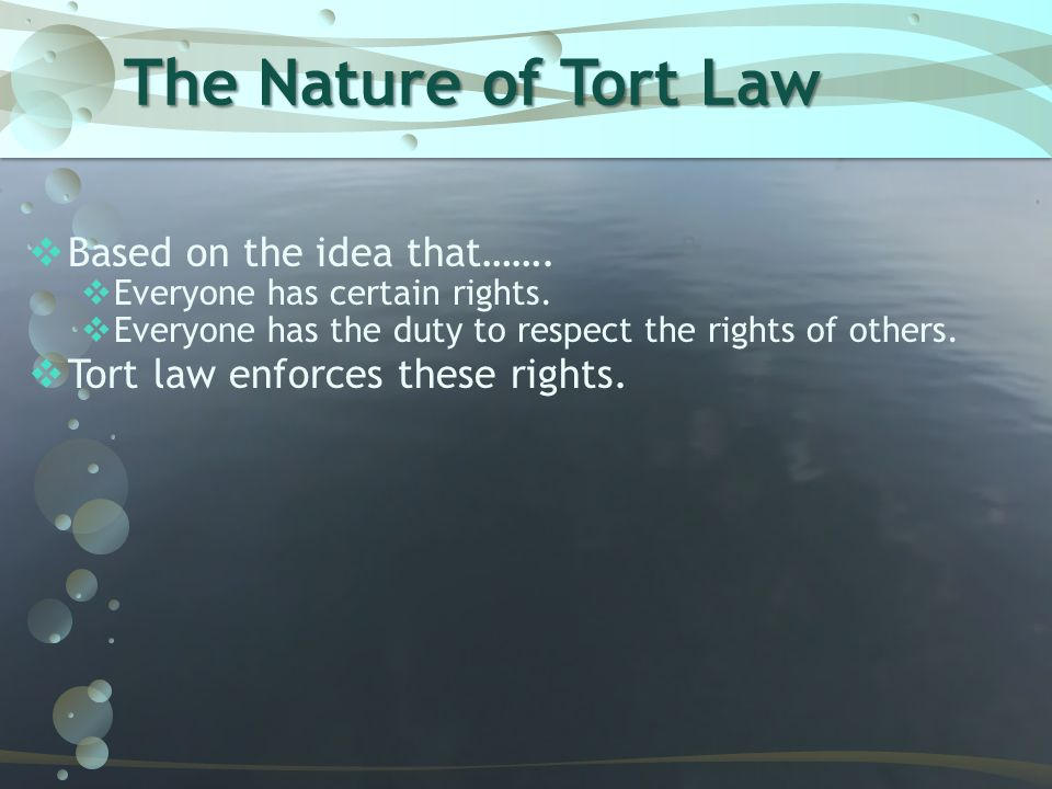 The Nature of Tort Law Based on the idea that…….