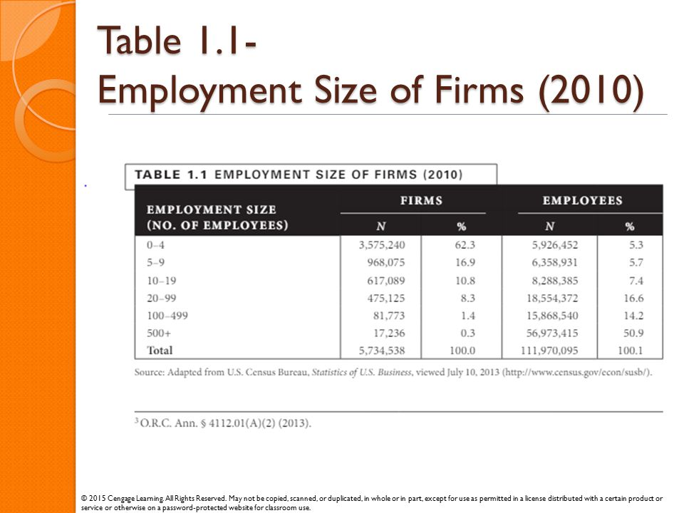 Table 1.1- Employment Size of Firms (2010)