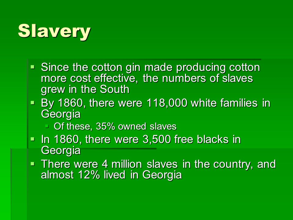 Slavery Since the cotton gin made producing cotton more cost effective, the numbers of slaves grew in the South.