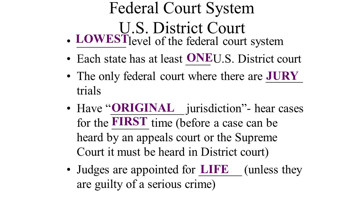 Federal Court System U.S. District Court
