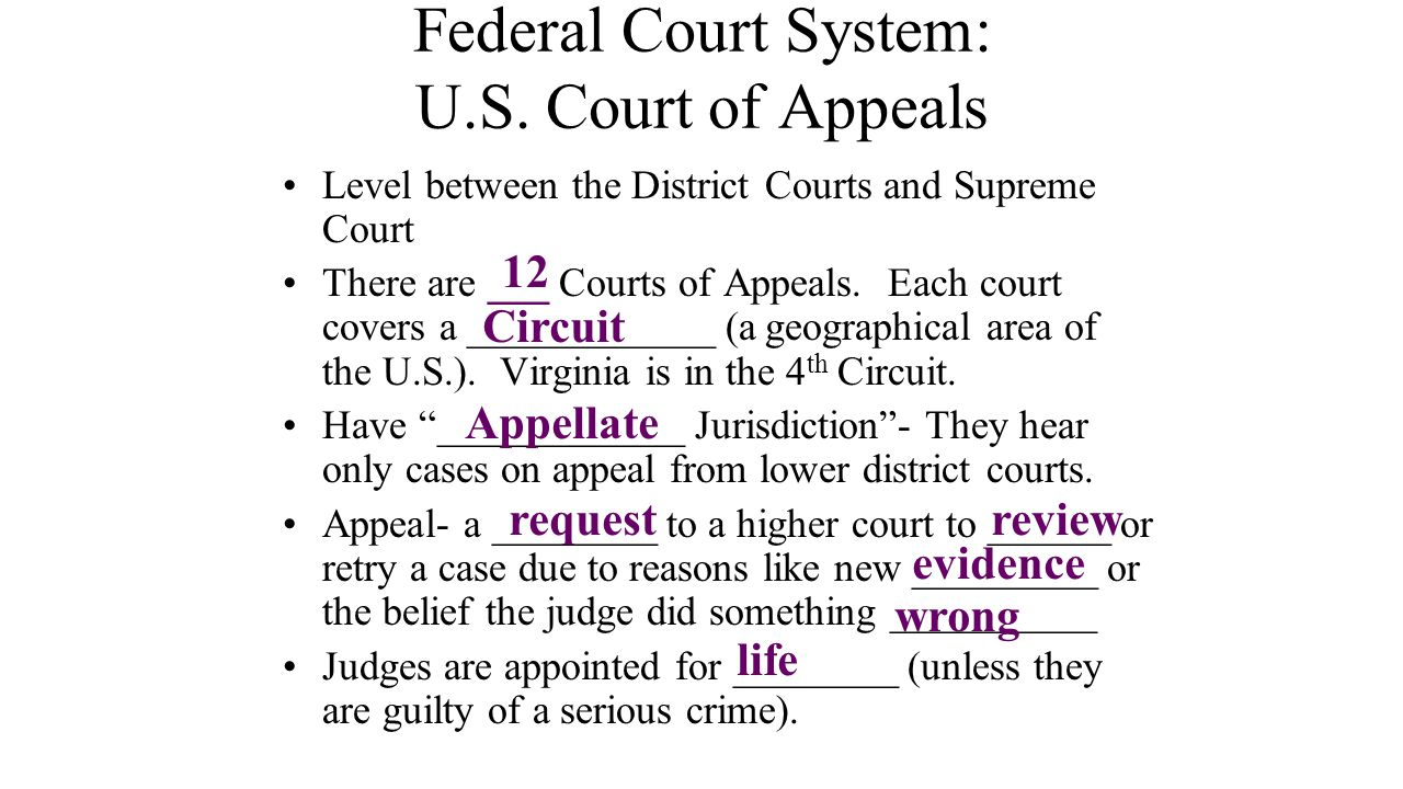 Federal Court System: U.S. Court of Appeals