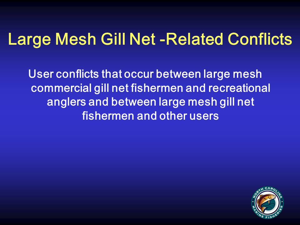 Large Mesh Gill Net -Related Conflicts