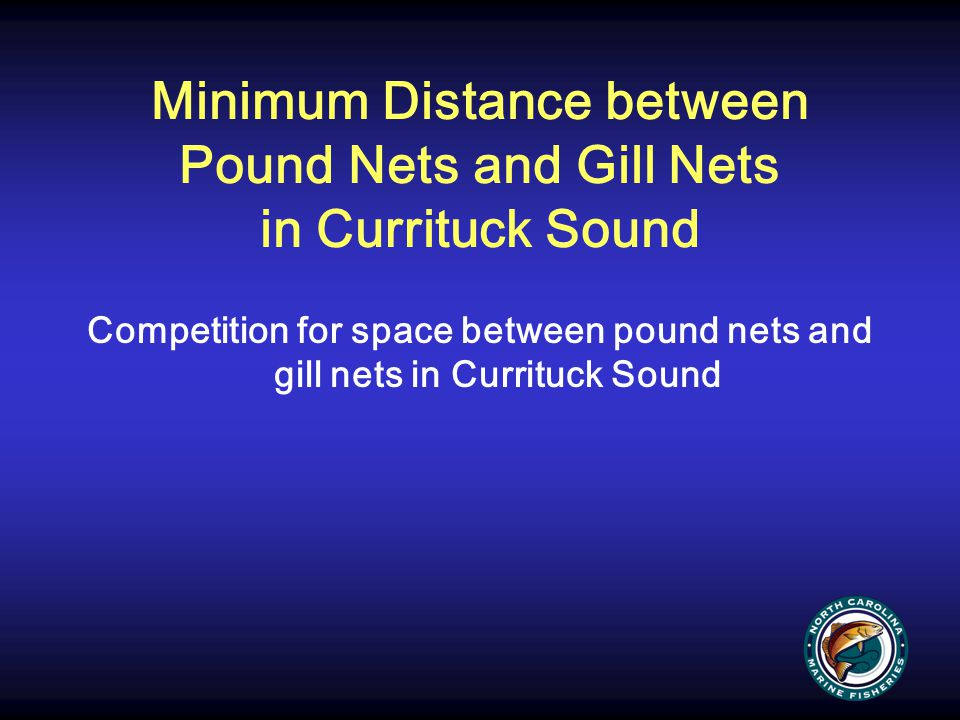 Minimum Distance between Pound Nets and Gill Nets in Currituck Sound