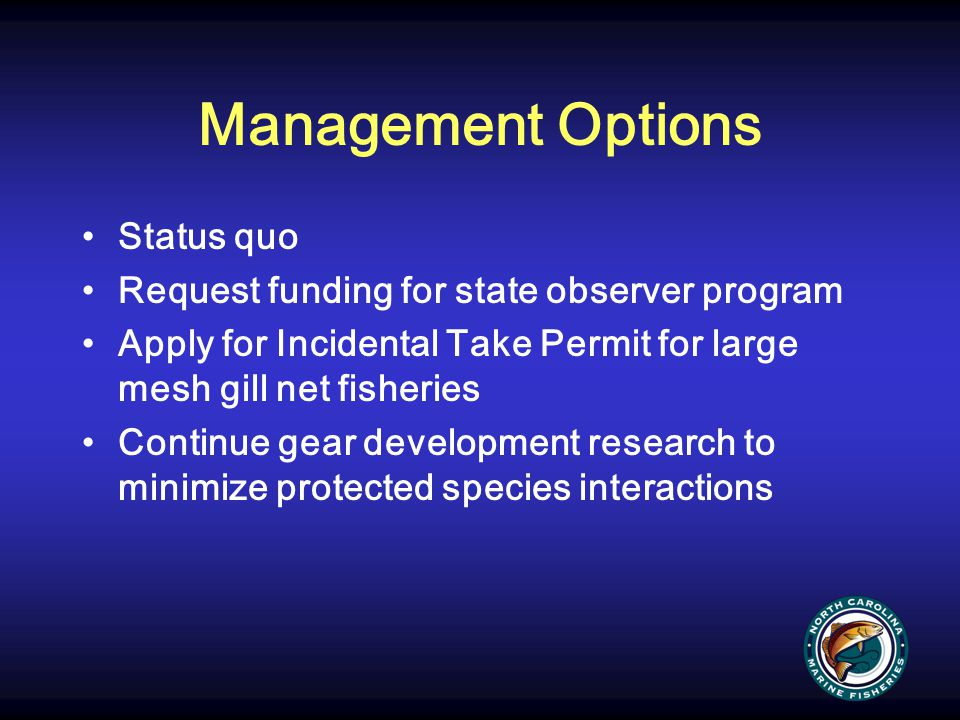 Management Options Status quo