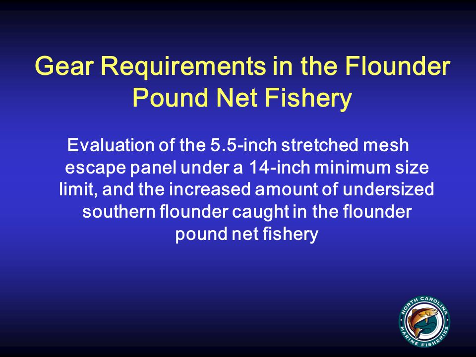 Gear Requirements in the Flounder Pound Net Fishery