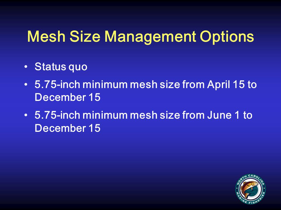 Mesh Size Management Options