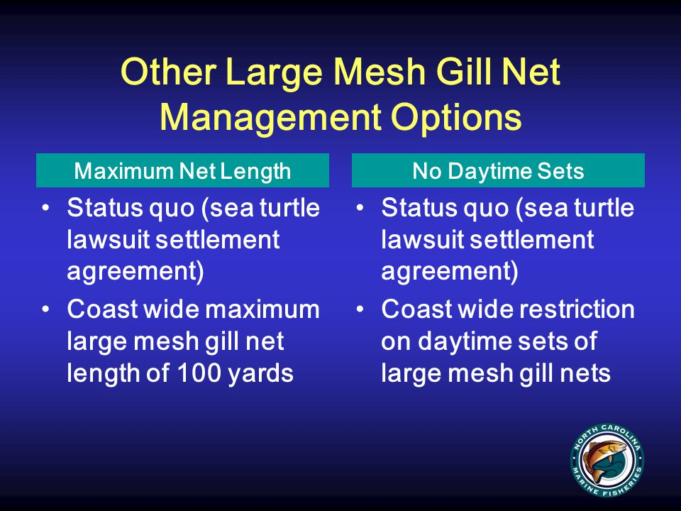 Other Large Mesh Gill Net Management Options