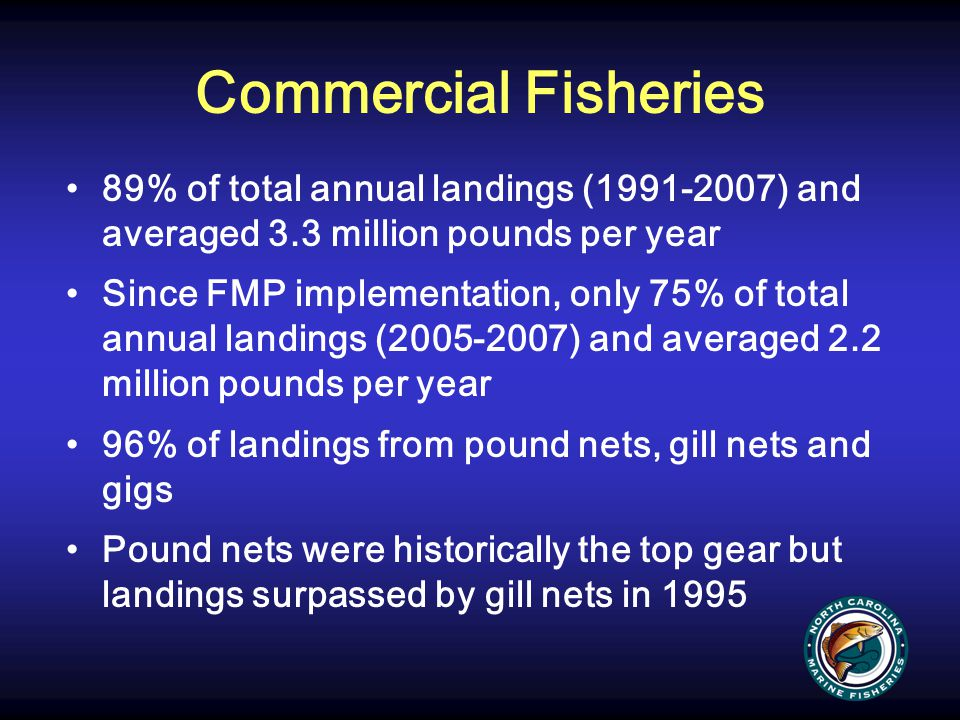 Commercial Fisheries 89% of total annual landings (1991-2007) and averaged 3.3 million pounds per year.