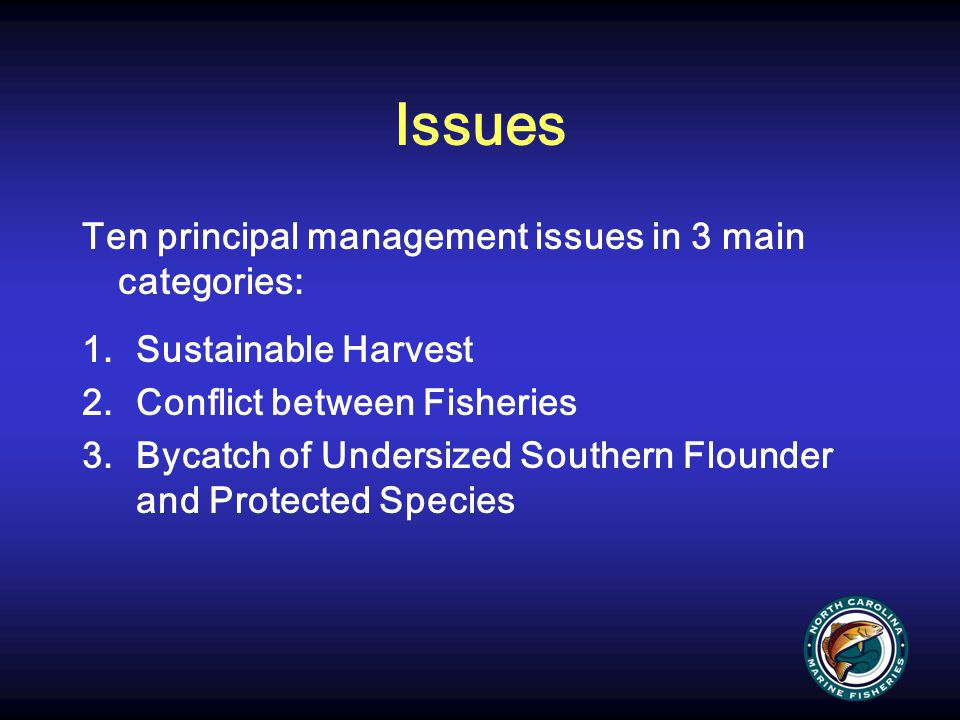 Issues Ten principal management issues in 3 main categories: