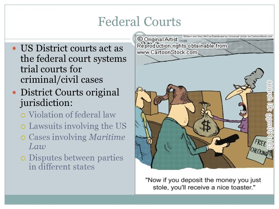 Federal Courts US District courts act as the federal court systems trial courts for criminal/civil cases.