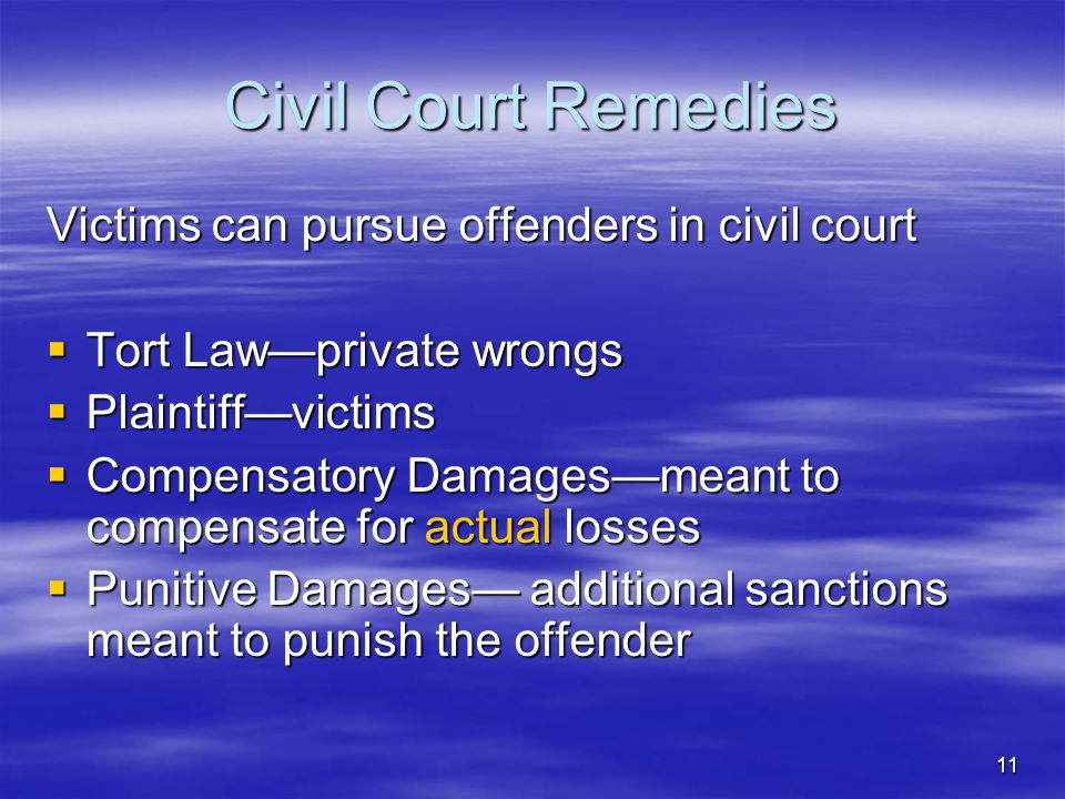 Civil Court Remedies Victims can pursue offenders in civil court