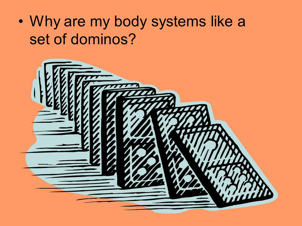 Why are my body systems like a set of dominos