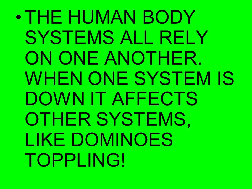 THE HUMAN BODY SYSTEMS ALL RELY ON ONE ANOTHER