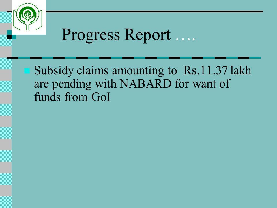 Progress Report ….