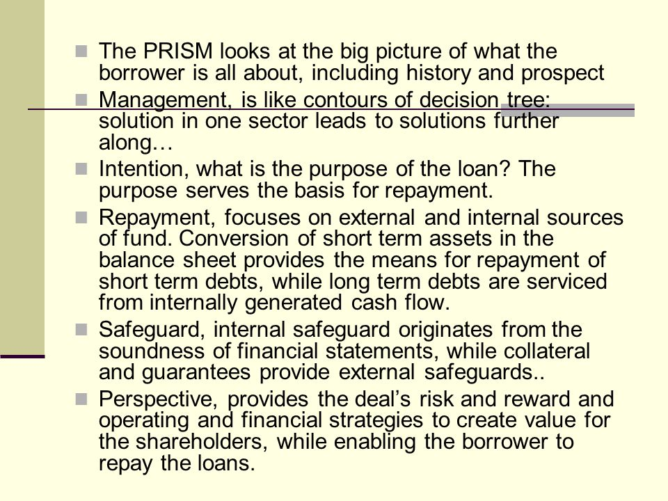 The PRISM looks at the big picture of what the borrower is all about, including history and prospect