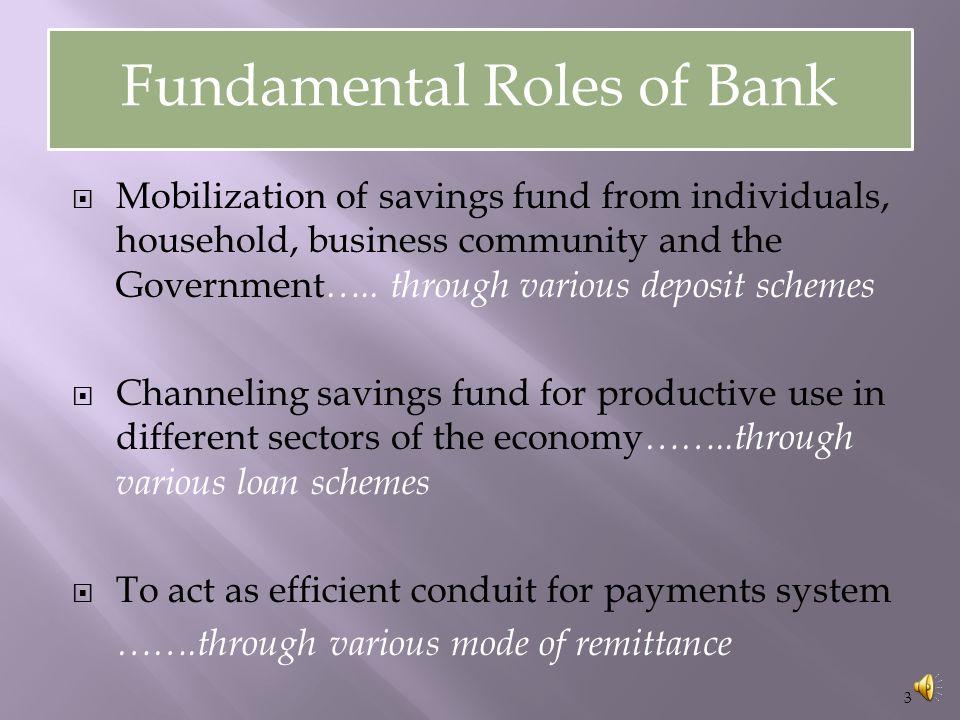 Fundamental Roles of Bank