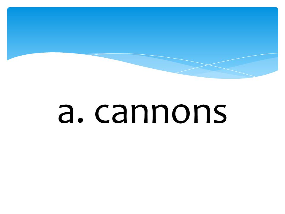 a. cannons