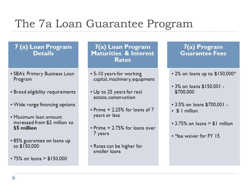 The 7a Loan Guarantee Program