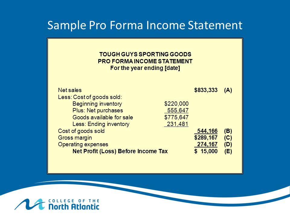 Sample Pro Forma Income Statement
